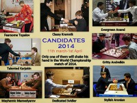 2014 Candidates Preview